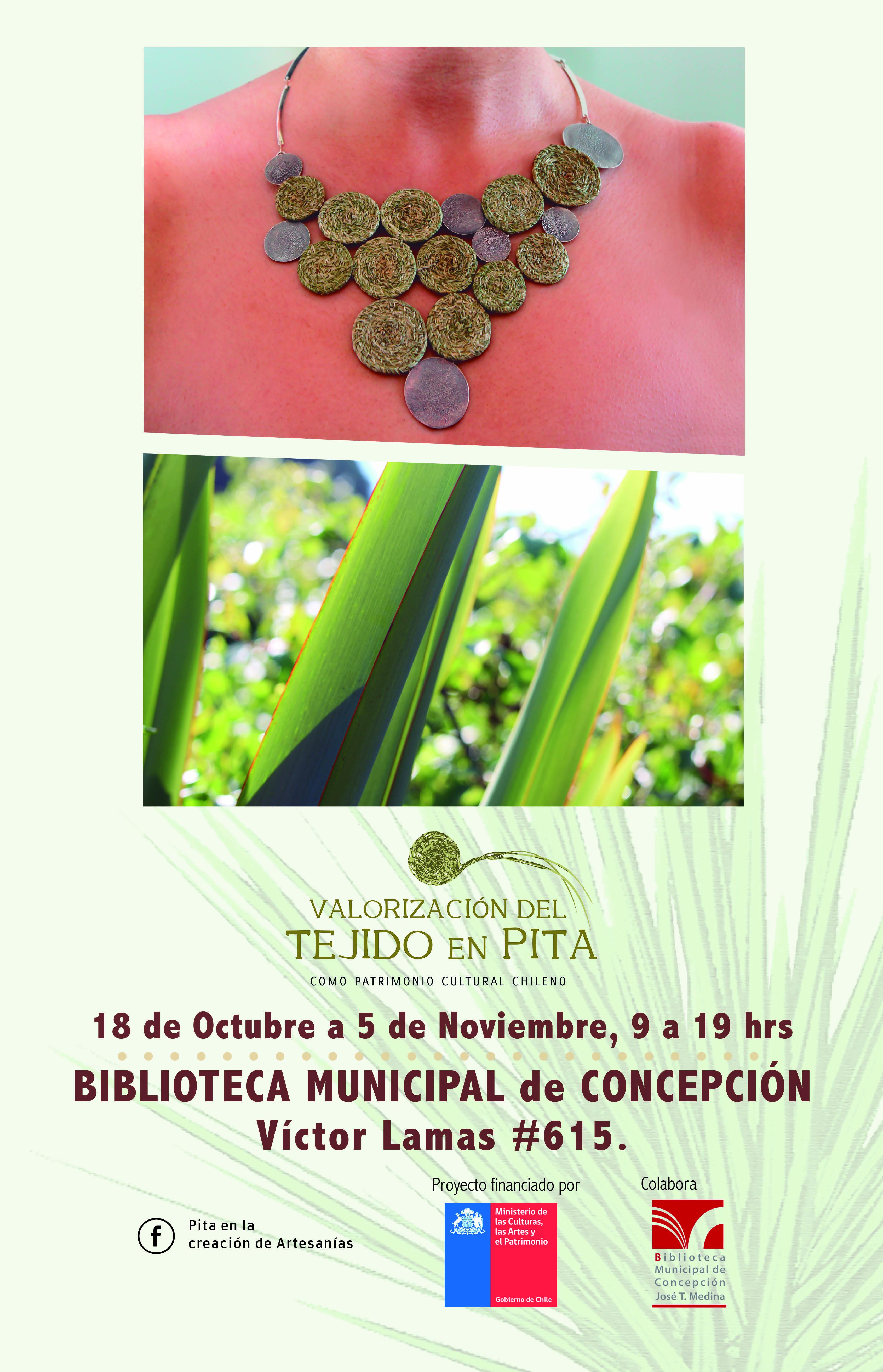 AFICHE PITA expo BIBLIOTECA_NOV